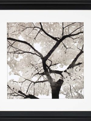 products-silver-leaves-framed-wall-art-b_7029__61296.1488656843.1280.1280