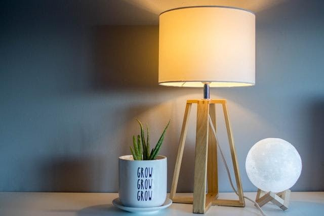 Two lamps and a potted plant on a desk