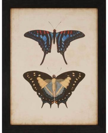 products-antique-butterfly-iii-framed-wall-art-b_4742__69925.1488946282.1280.1280