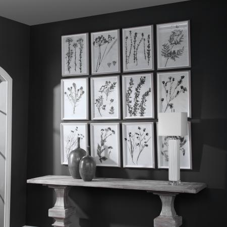 Contemporary Botanicals Framed Prints